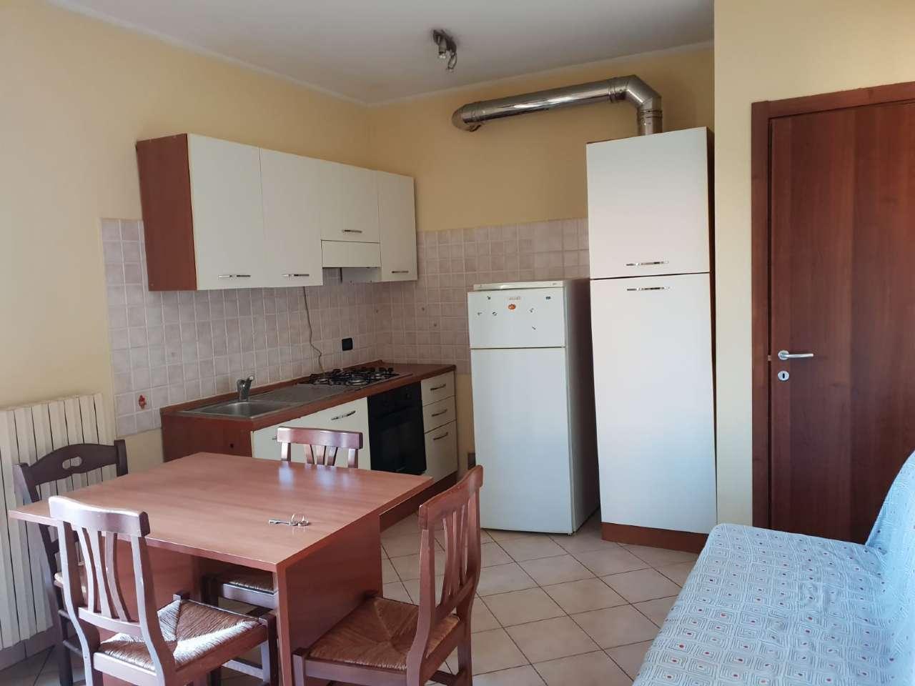 Appartamento in ottime condizioni arredato in affitto Rif. 8271937