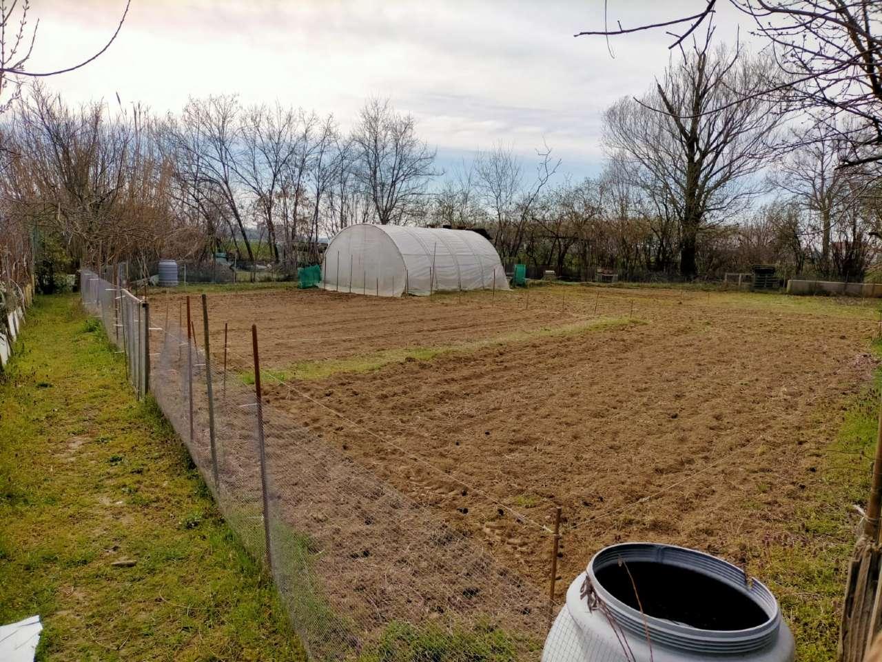 Terreno Agricolo in vendita a Candiolo, 9999 locali, prezzo € 22.000 | PortaleAgenzieImmobiliari.it