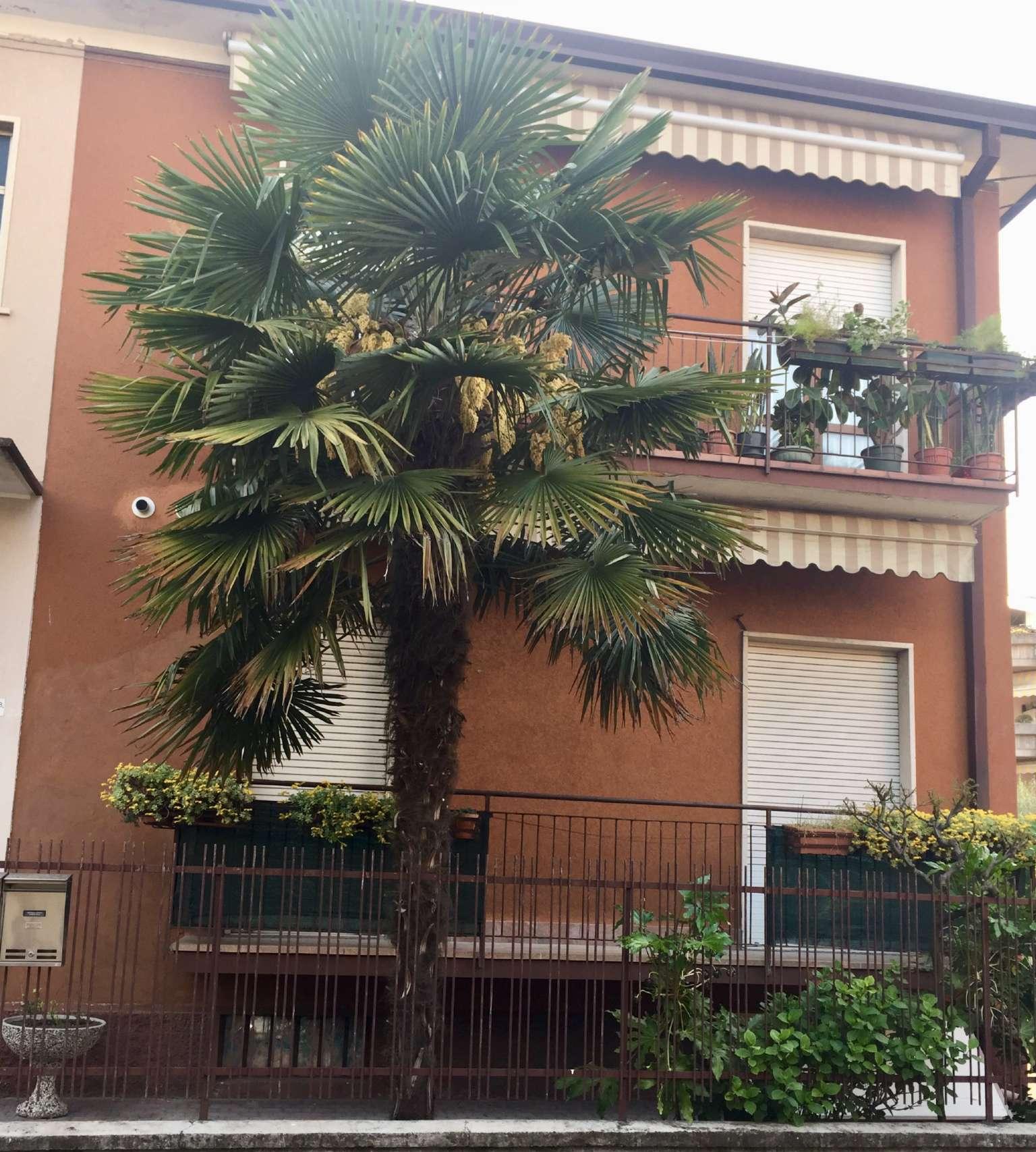 Appartamento in affitto a Verona, 3 locali, zona Zona: 10 . Borgo Roma - Ca' di David - Palazzina - Zai, prezzo € 700   CambioCasa.it