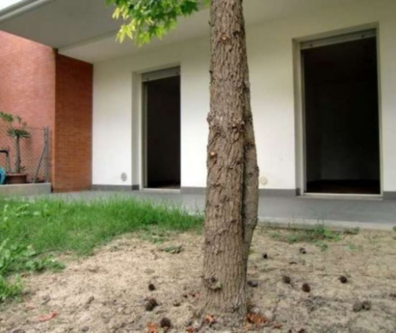 Appartamento in buone condizioni in affitto Rif. 9179974