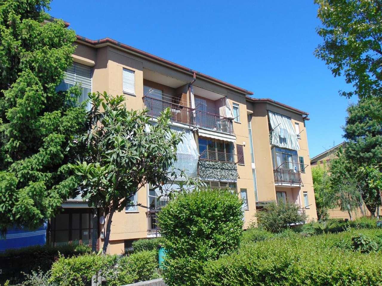 Appartamento in affitto a Rivalta di Torino, 3 locali, prezzo € 410   PortaleAgenzieImmobiliari.it