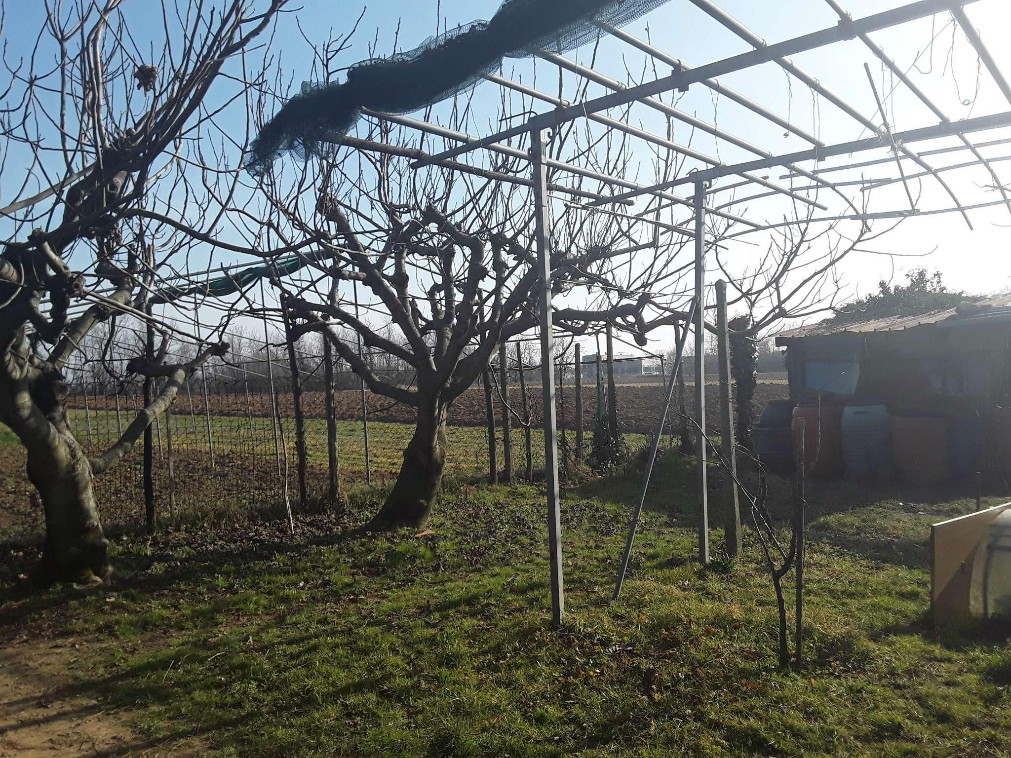 Terreno Agricolo in vendita a Alpignano, 1 locali, prezzo € 18.000 | PortaleAgenzieImmobiliari.it
