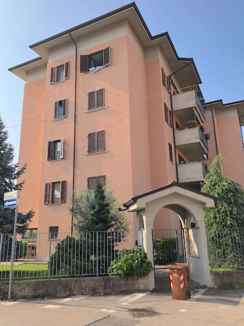 Appartamento in buone condizioni arredato in affitto Rif. 7849282