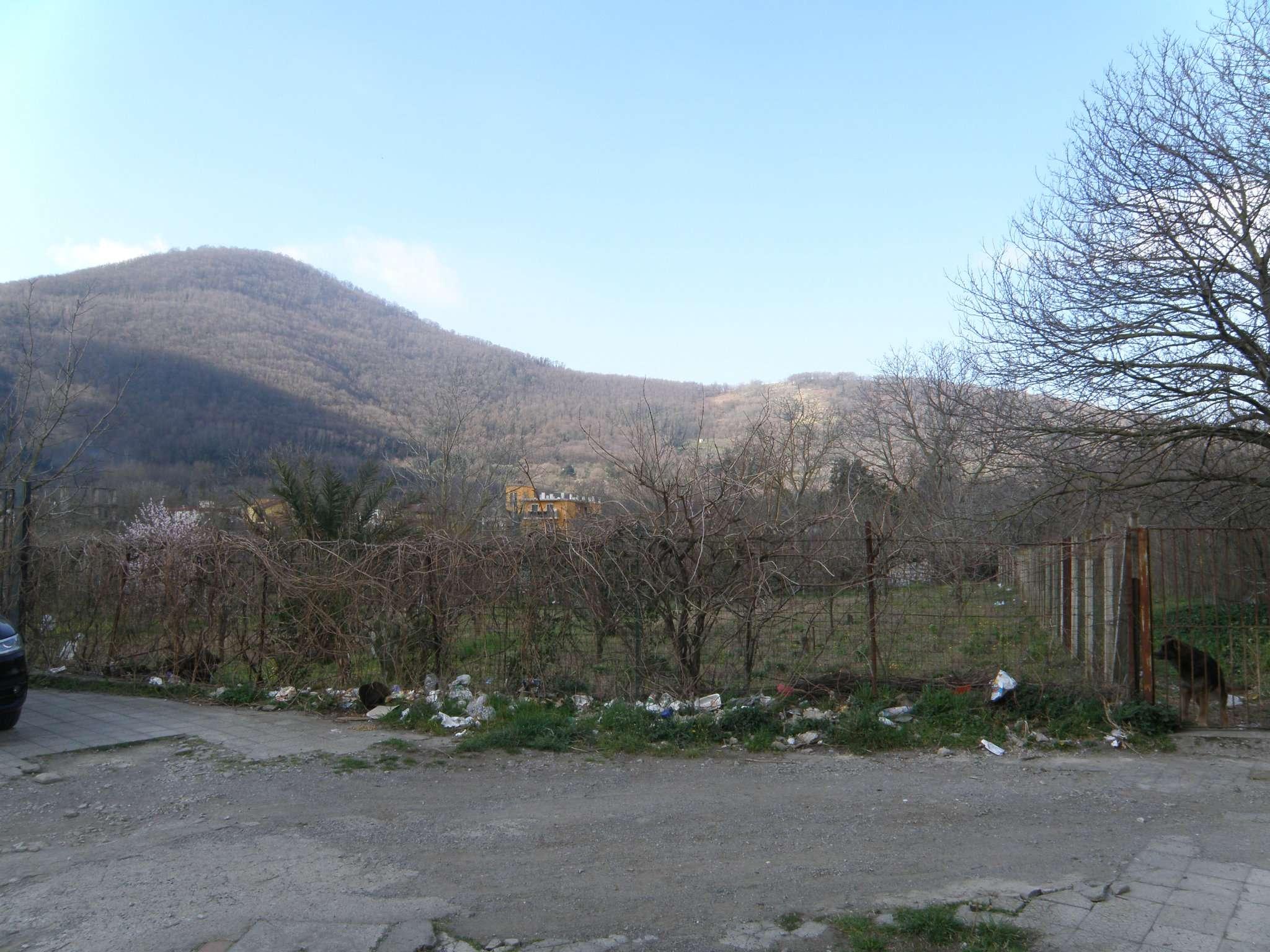 Terreno Agricolo in vendita a Siano, 1 locali, prezzo € 55.000 | CambioCasa.it