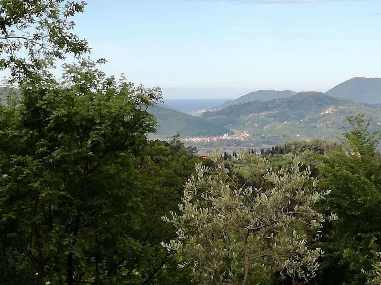 Affitto turistico casale in pietra sulle colline di Fosdinovo Rif. 6936581