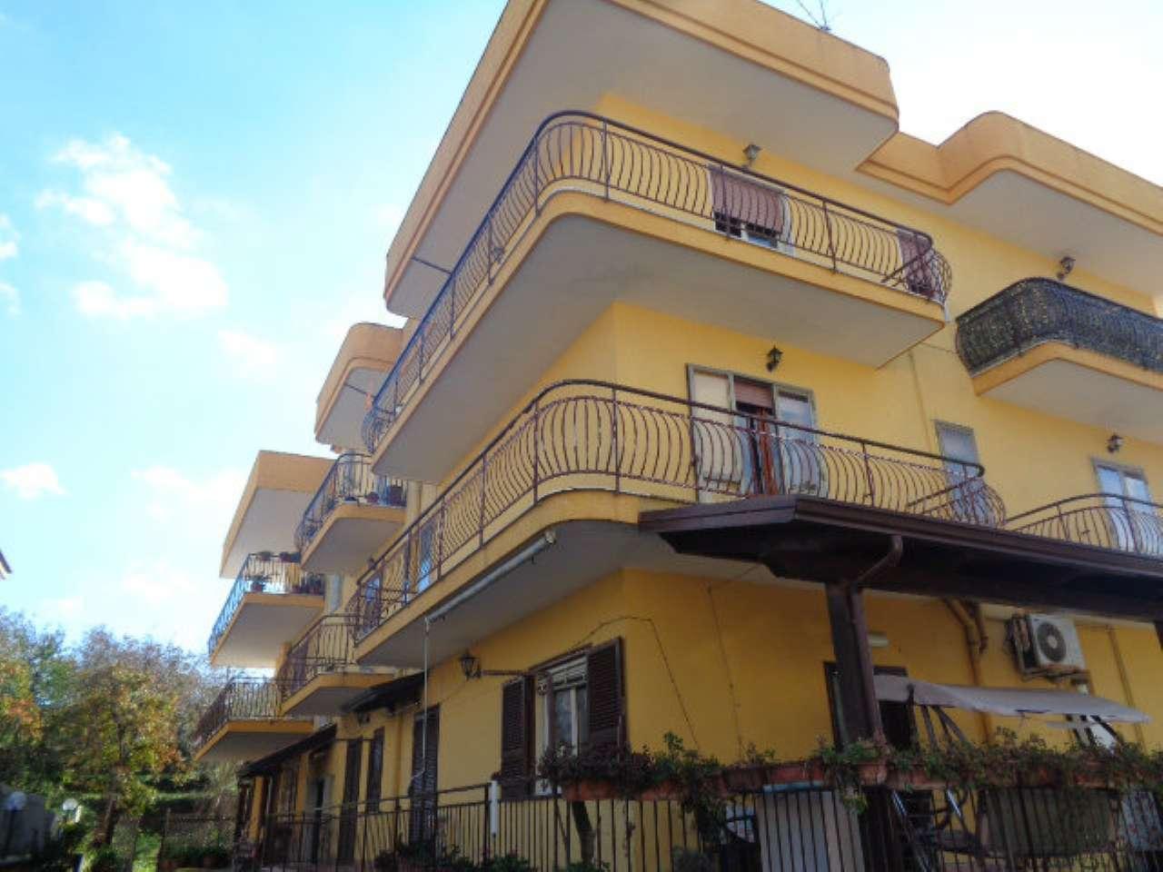 Appartamento in ottime condizioni in affitto Rif. 8551272