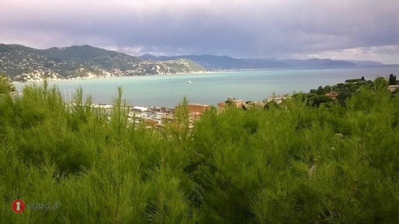 Rif.4260 - Santa Margherita Ligure - Affitto Annuale/Stagionale - Vista Mare - Centrale
