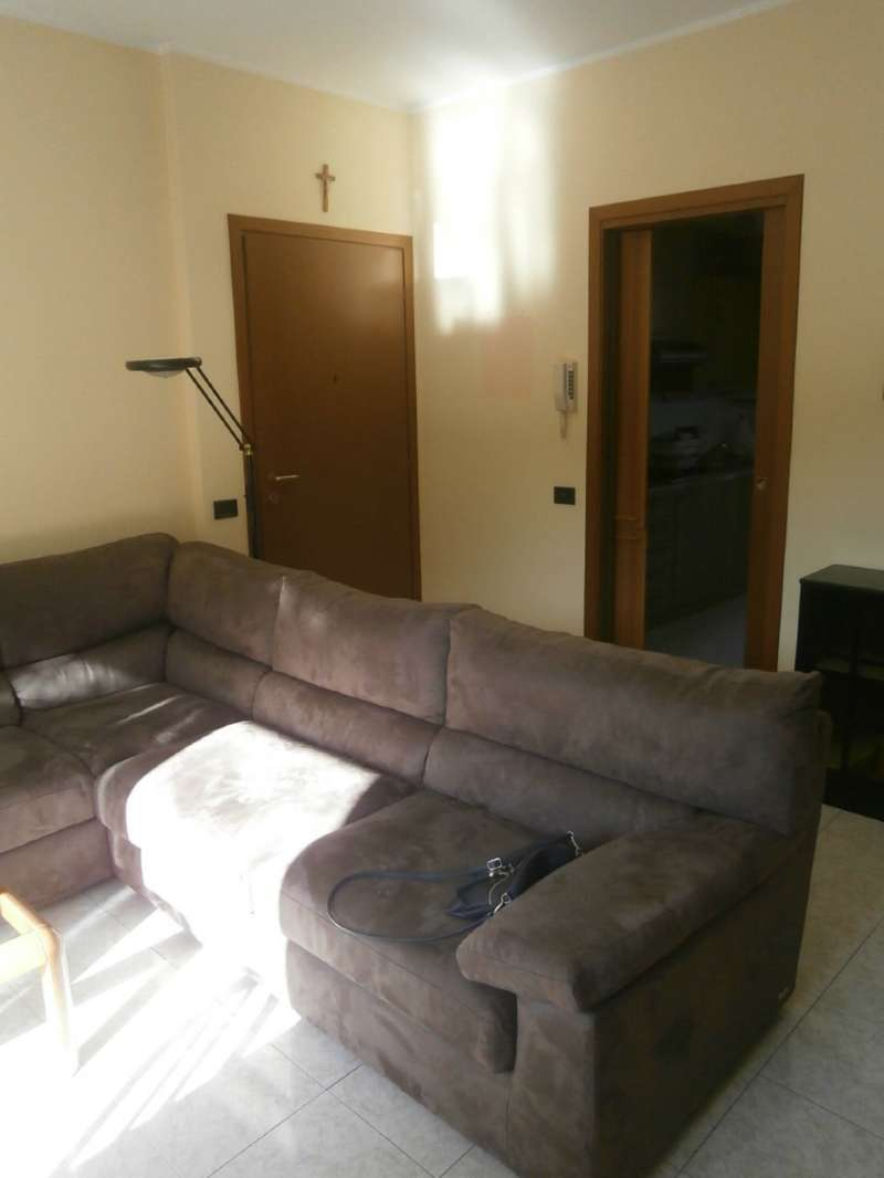 Appartamento in buone condizioni arredato in affitto Rif. 8523254