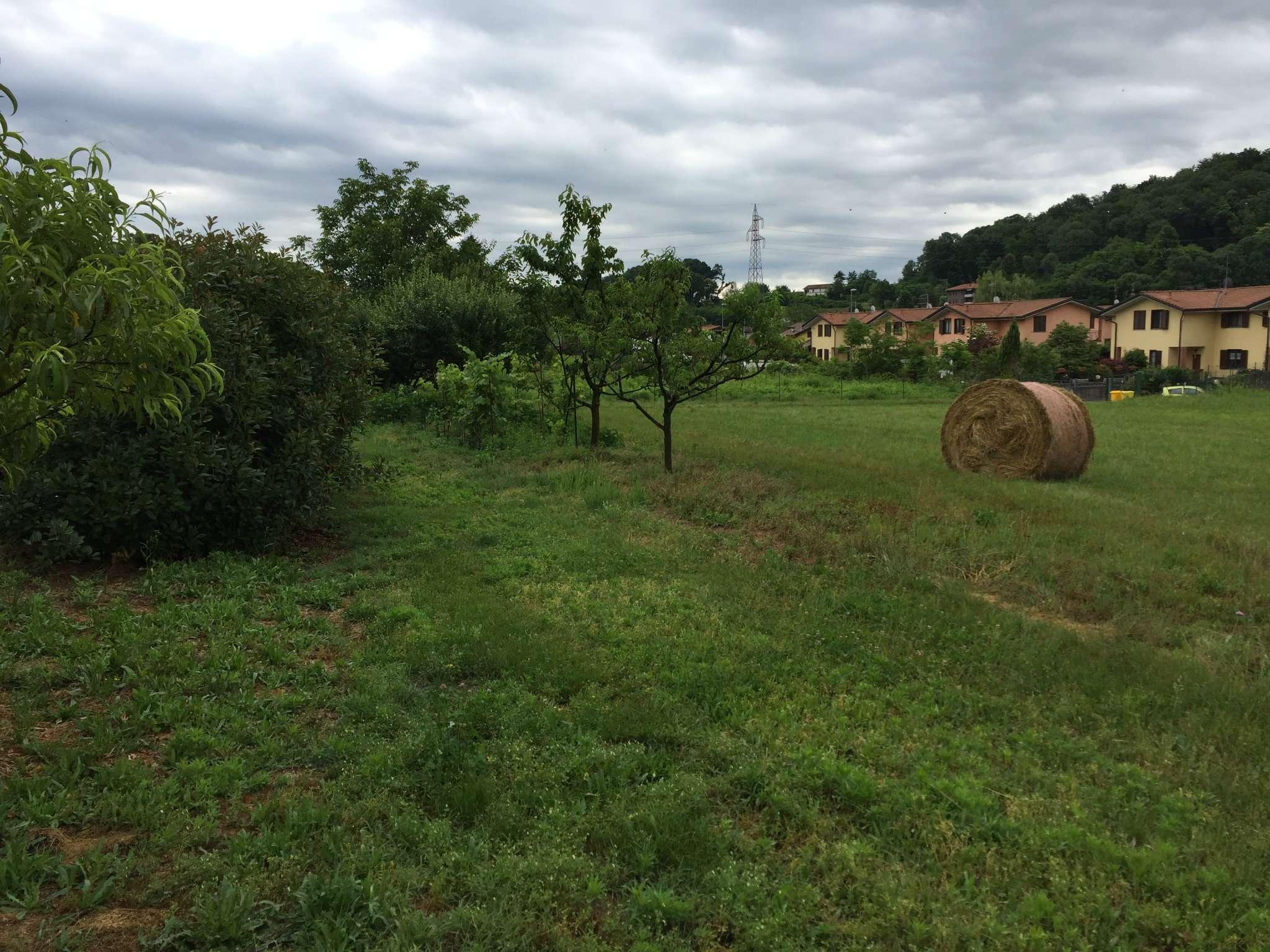 Terreno Agricolo in vendita a Travedona-Monate, 9999 locali, prezzo € 68.000   CambioCasa.it
