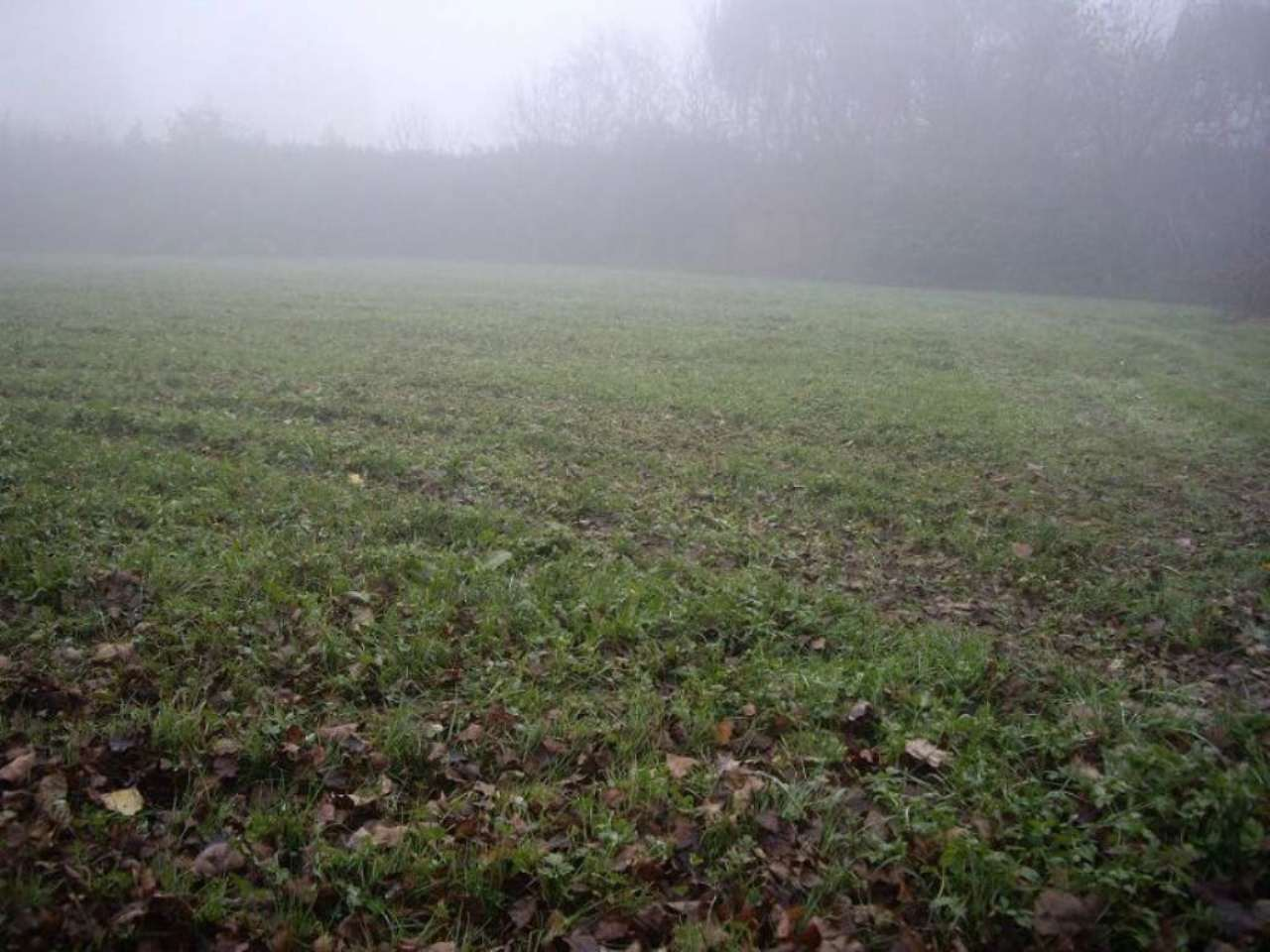 Terreno Agricolo in vendita a Arzago d'Adda, 9999 locali, prezzo € 50.000 | CambioCasa.it