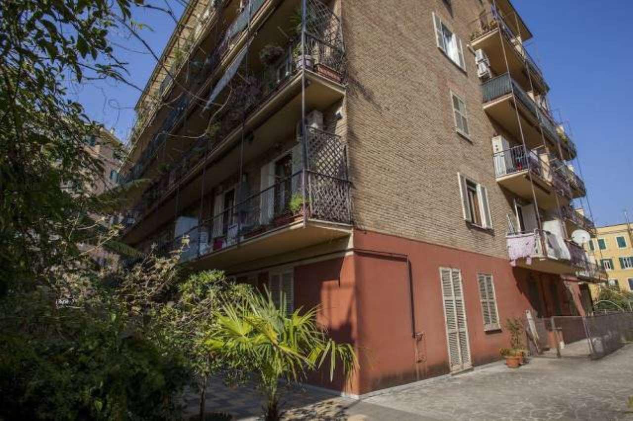 Appartamento in affitto a Roma, 3 locali, zona Zona: 16 . Appia nuova - Alberone - Colli Albani, prezzo € 750   CambioCasa.it