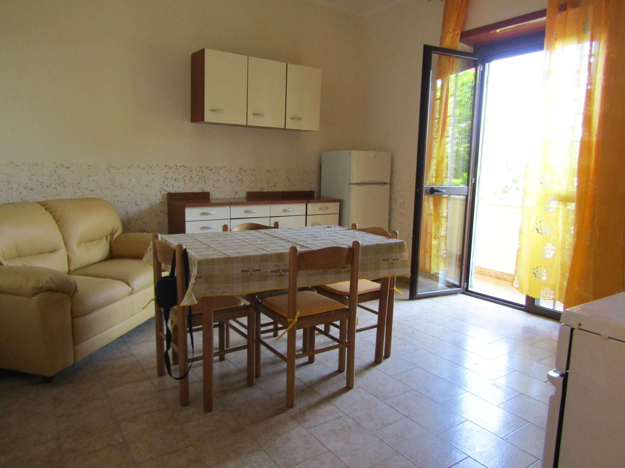 Appartamento in buone condizioni arredato in affitto Rif. 8494904