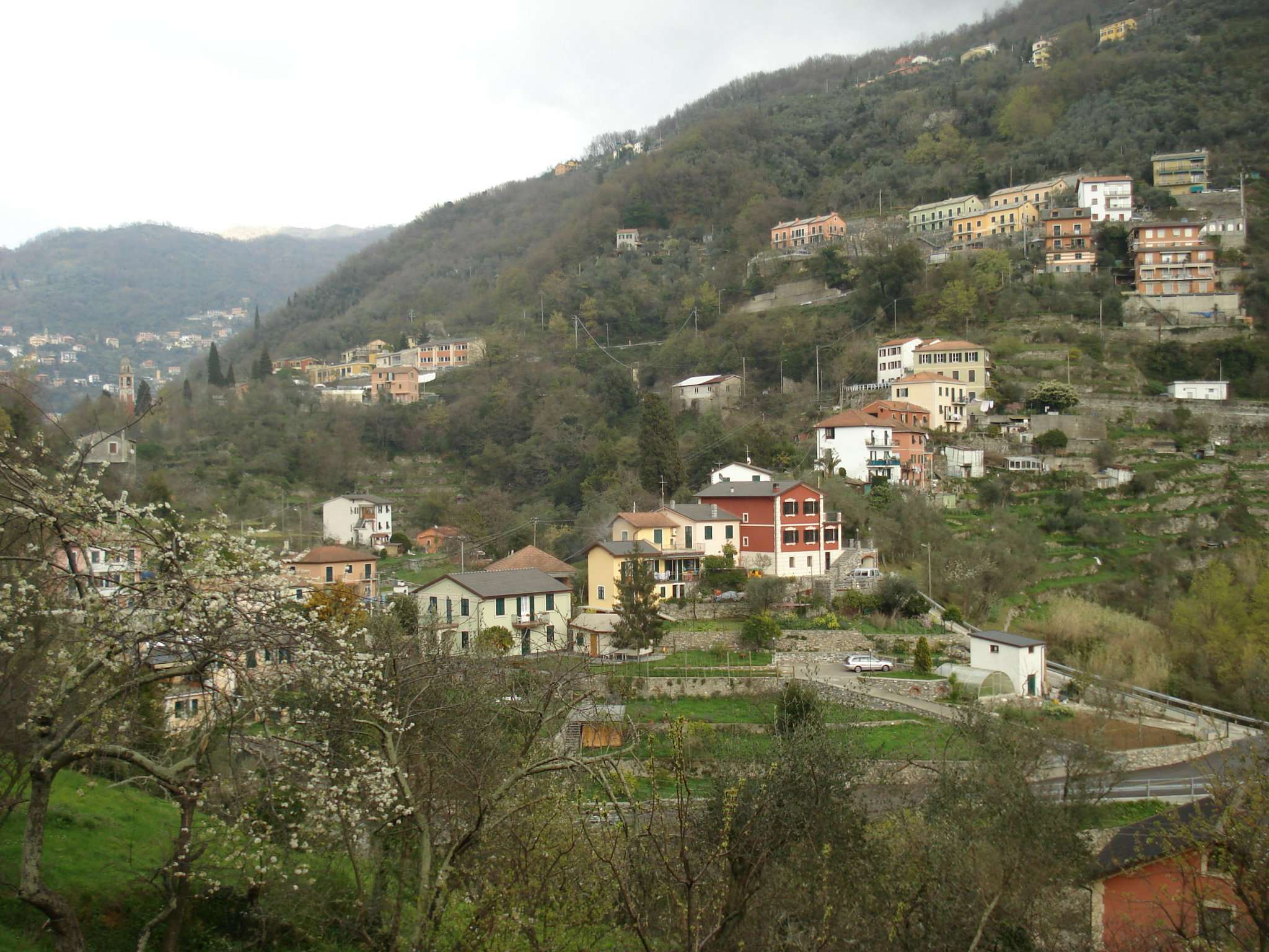 Ristorante / Pizzeria / Trattoria in affitto a Avegno, 4 locali, Trattative riservate | CambioCasa.it