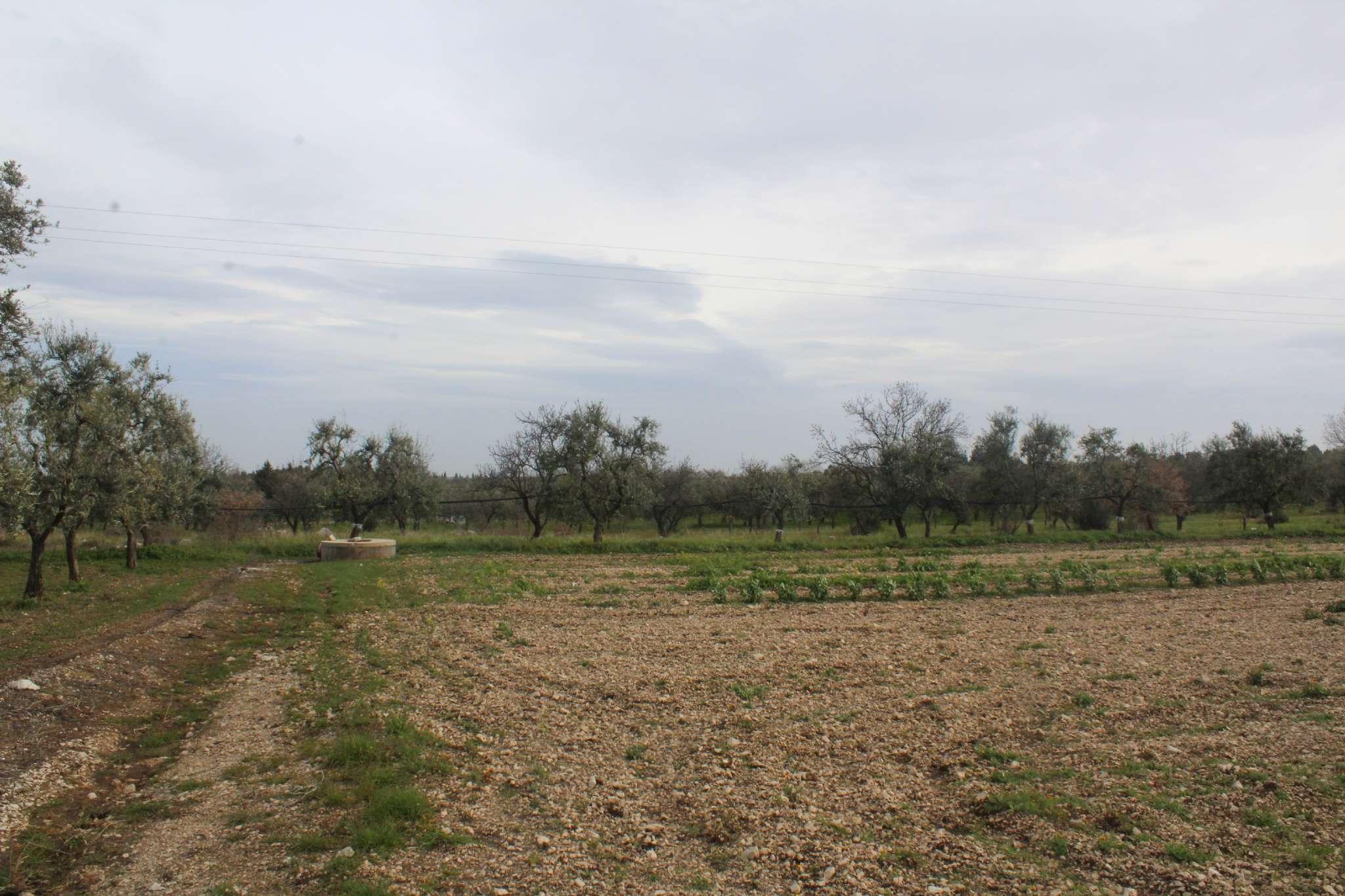 Terreno Agricolo in vendita a Andria, 9999 locali, prezzo € 115.000 | PortaleAgenzieImmobiliari.it