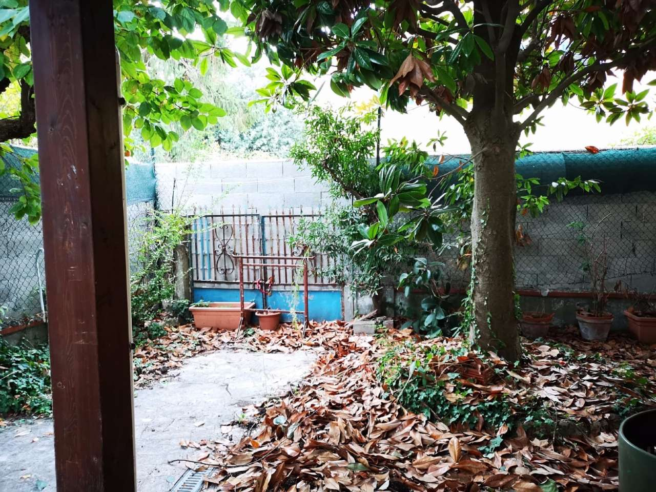 Casa Indipendente in condizioni mediocri in affitto Rif. 8427647