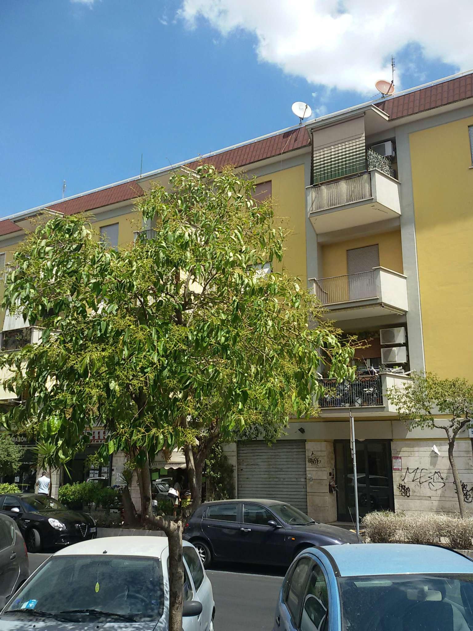 Appartamento In Vendita A Ciampino, 3 Locali, Prezzo U20ac 195.000    CambioCasa.it