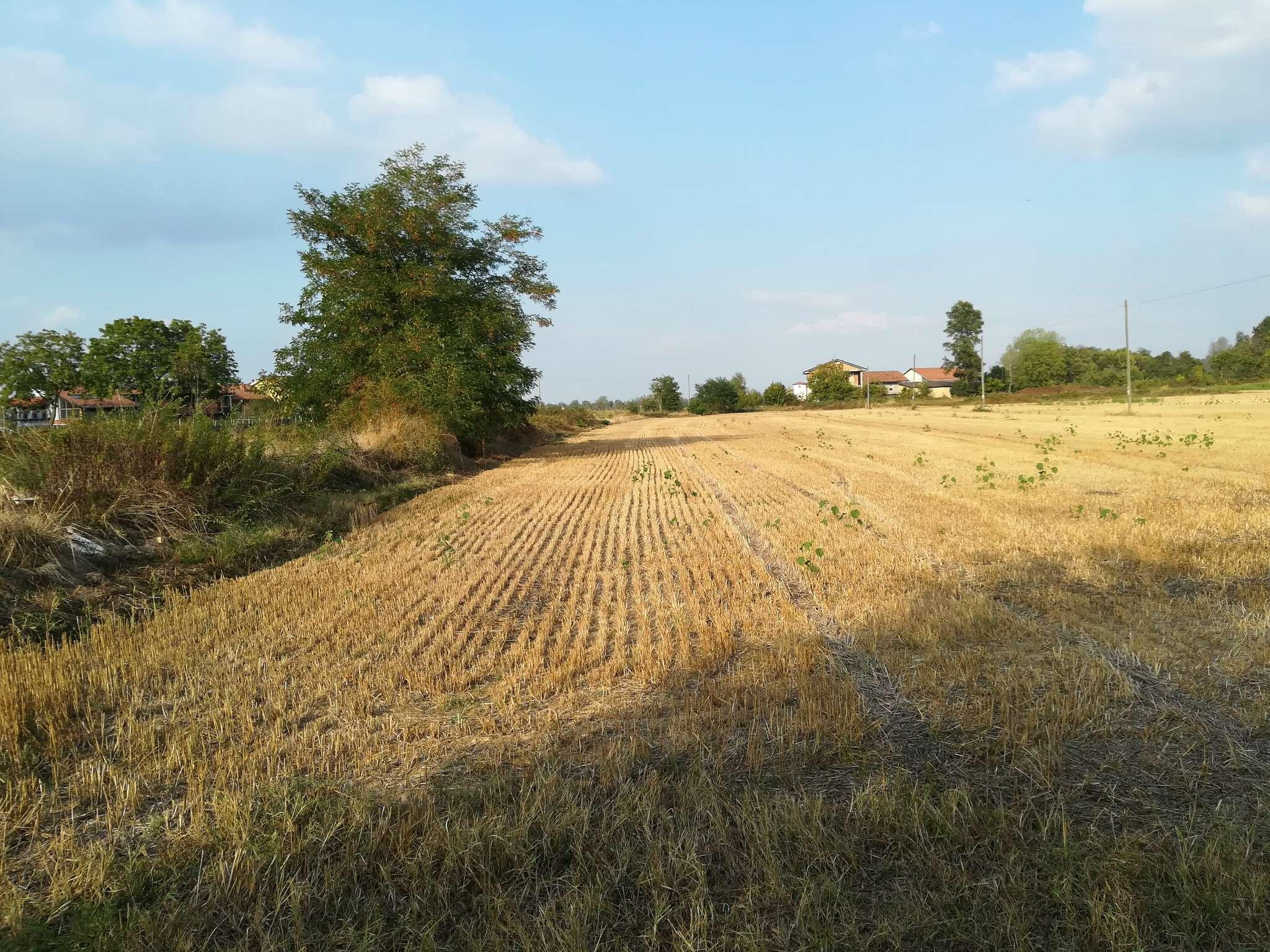 Terreno Edificabile Artigianale in vendita a Pianfei, 9999 locali, prezzo € 580.000 | CambioCasa.it
