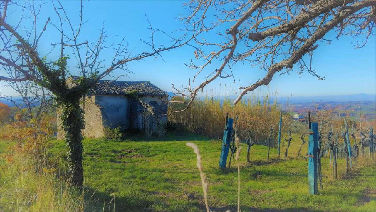 Rustico / Casale in vendita a Torri in Sabina, 1 locali, Trattative riservate   CambioCasa.it