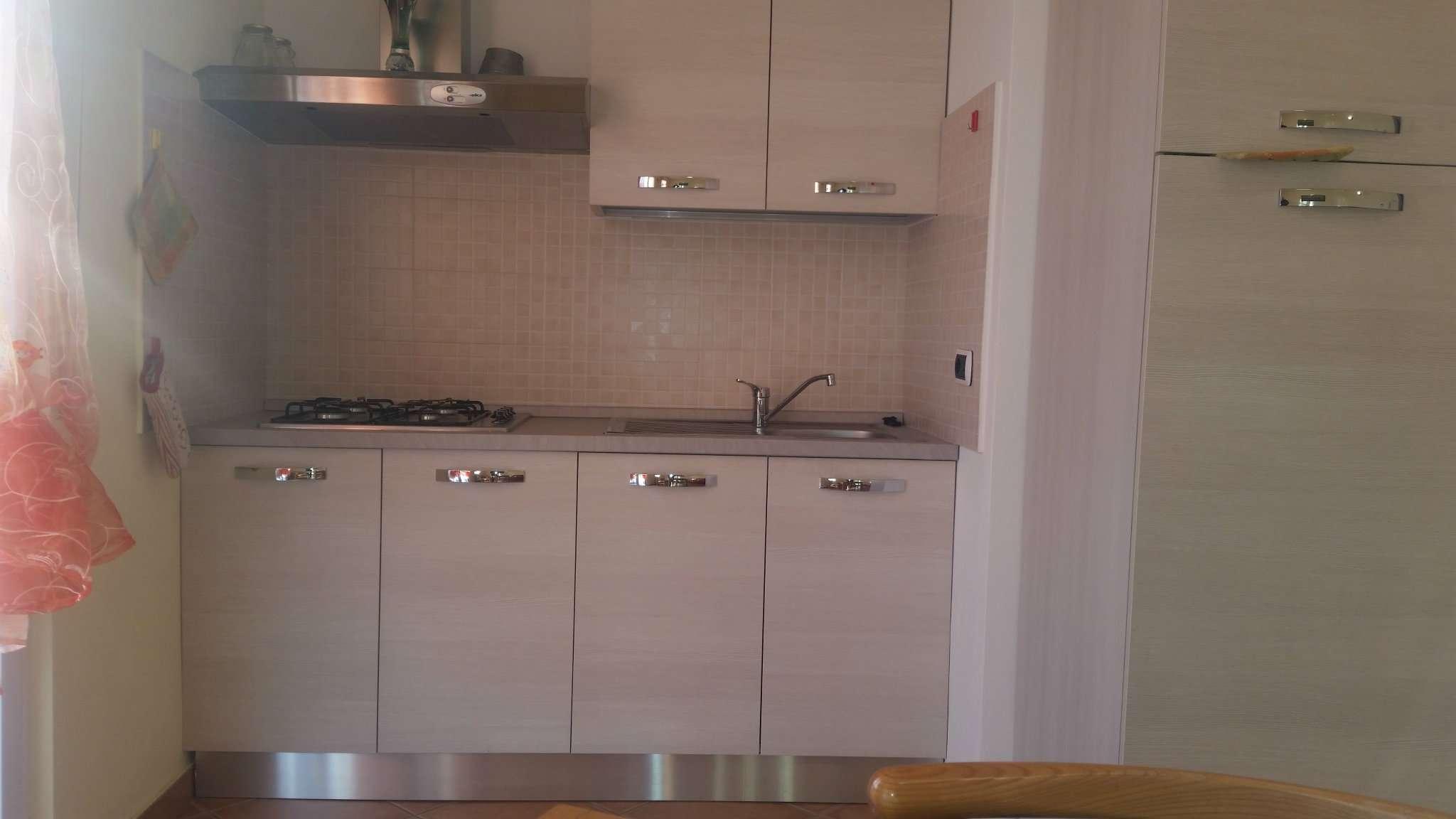 Appartamento ristrutturato arredato in affitto Rif. 7403276