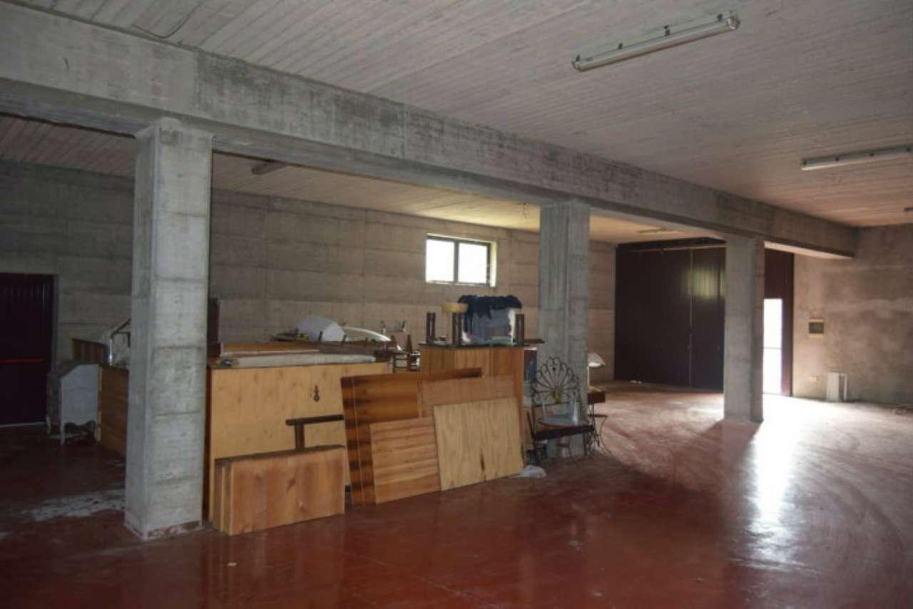 Capannone in affitto a Casarza Ligure, 1 locali, prezzo € 1.300 | CambioCasa.it
