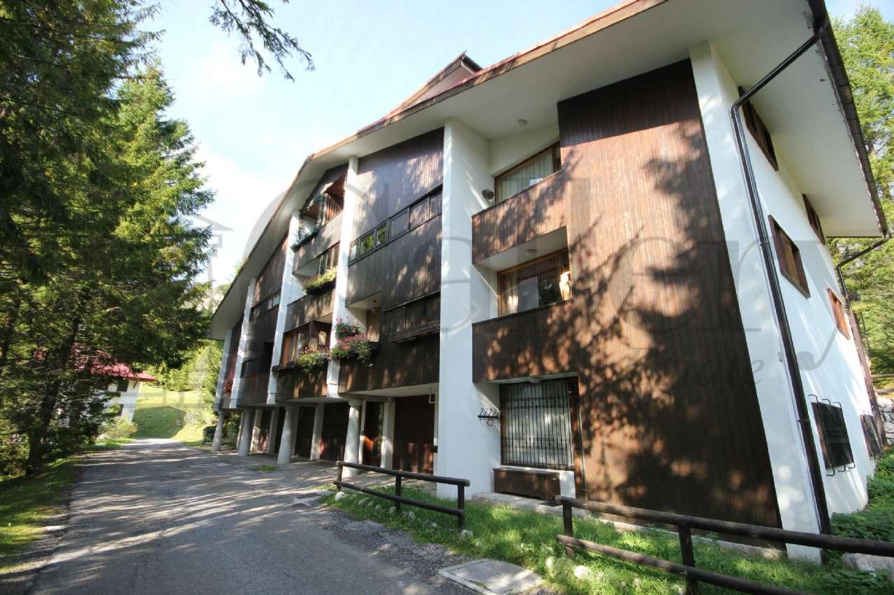 Appartamento in buone condizioni arredato in vendita Rif. 5286332