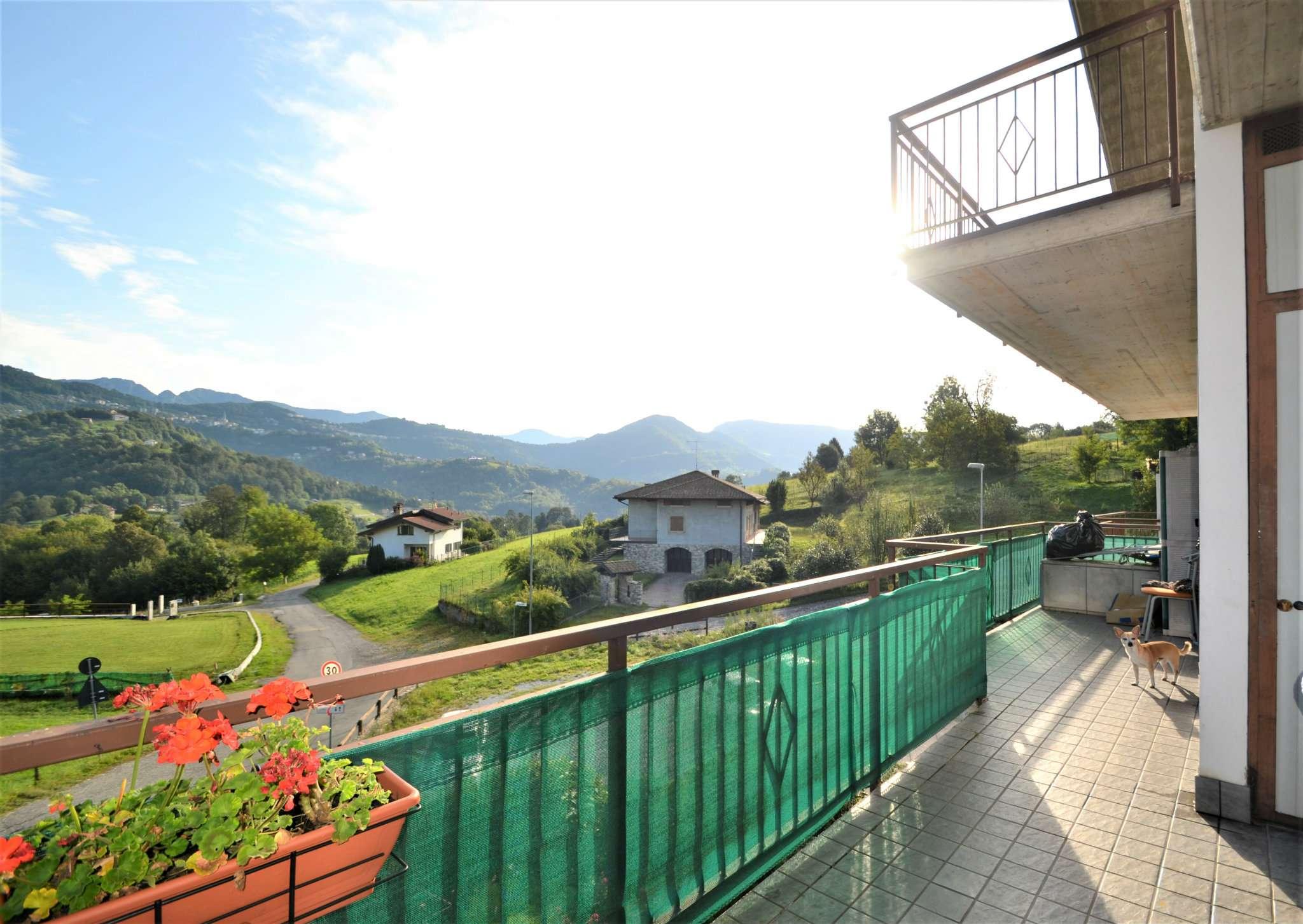 Appartamento in affitto a Bedulita, 3 locali, prezzo € 450 | PortaleAgenzieImmobiliari.it