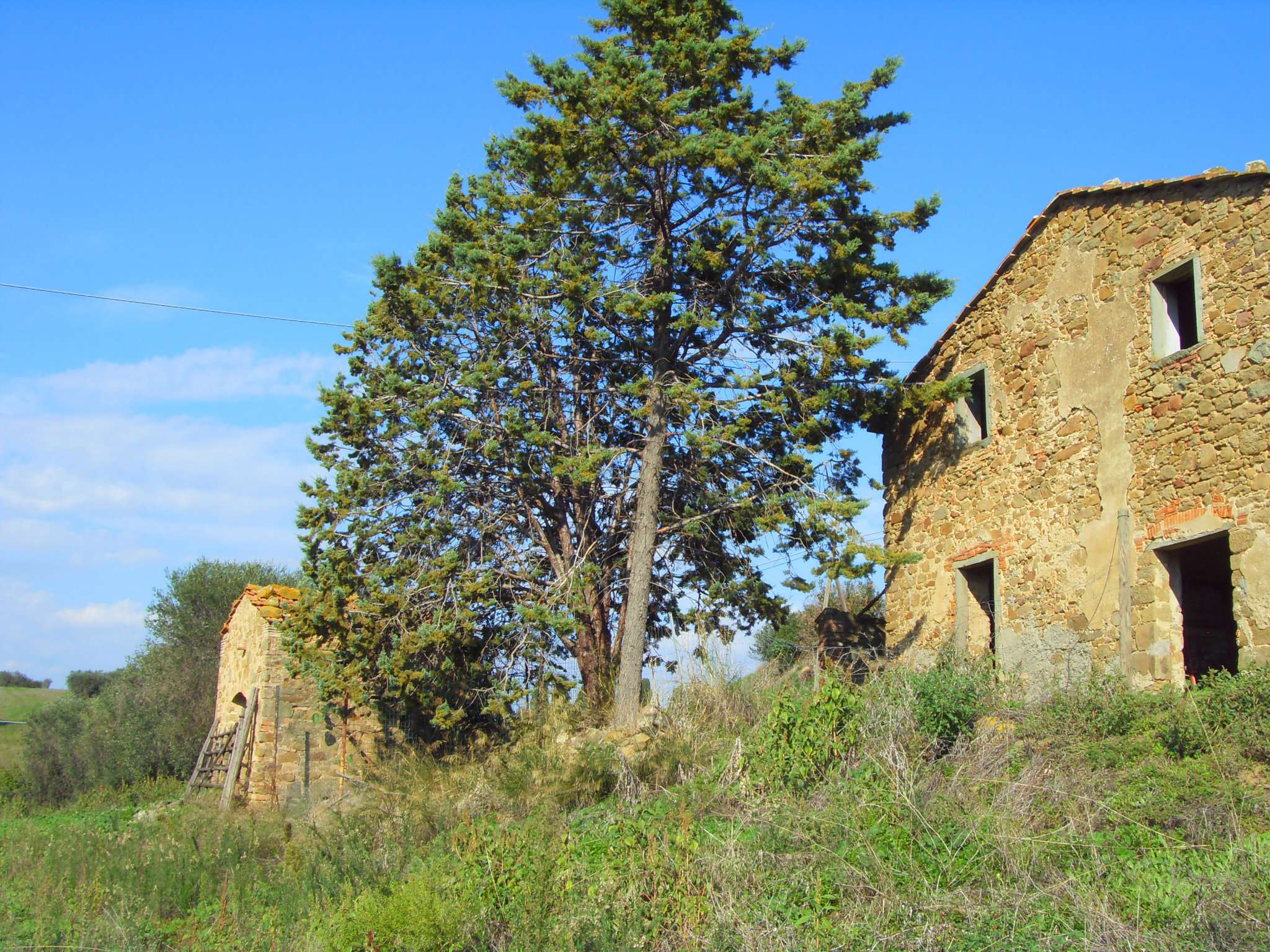 Casa rurale a Montiano