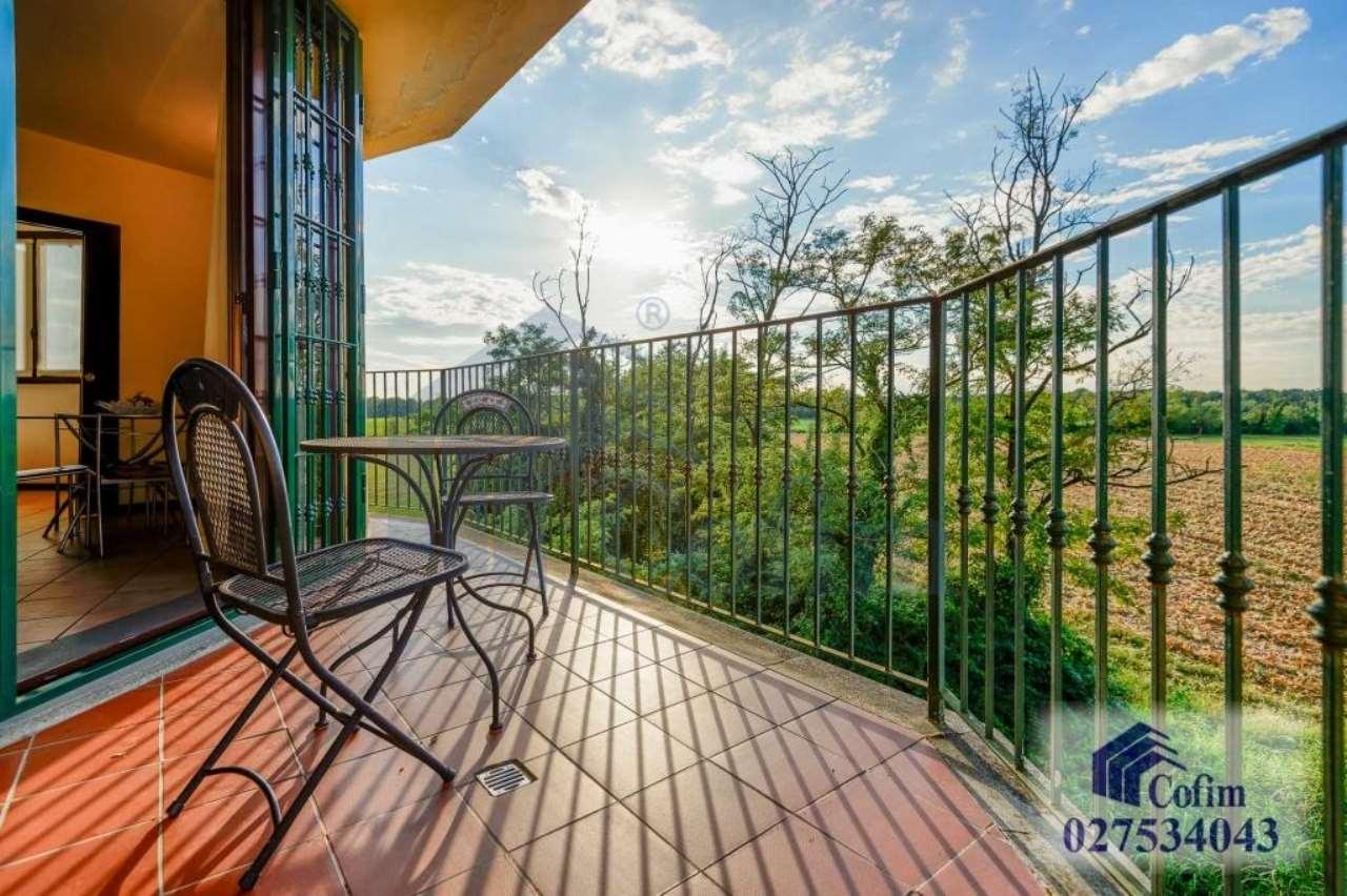 Appartamento in affitto Rif. 8326233