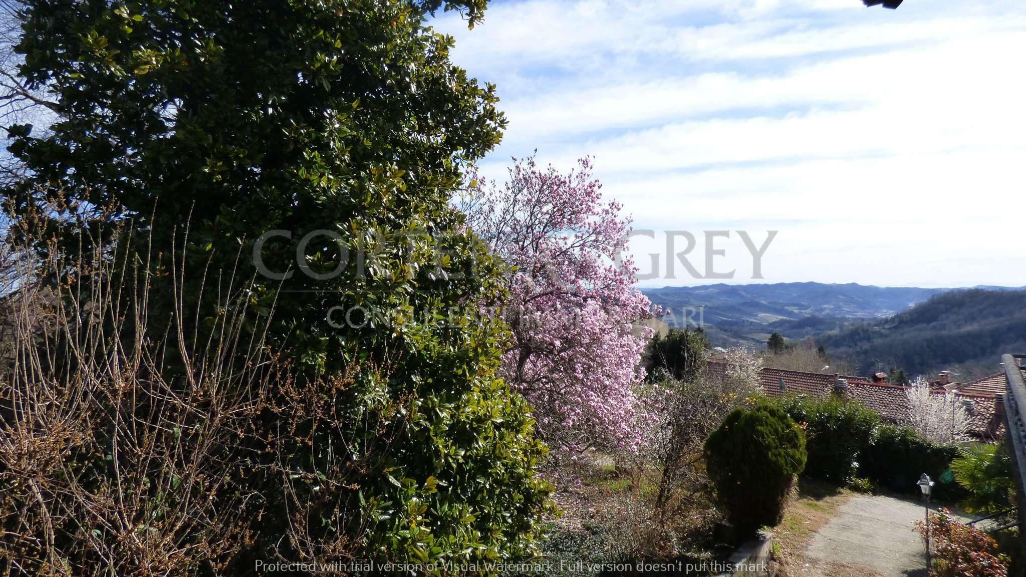 Villa in vendita a Castagneto Po, 8 locali, prezzo € 395.000 | PortaleAgenzieImmobiliari.it