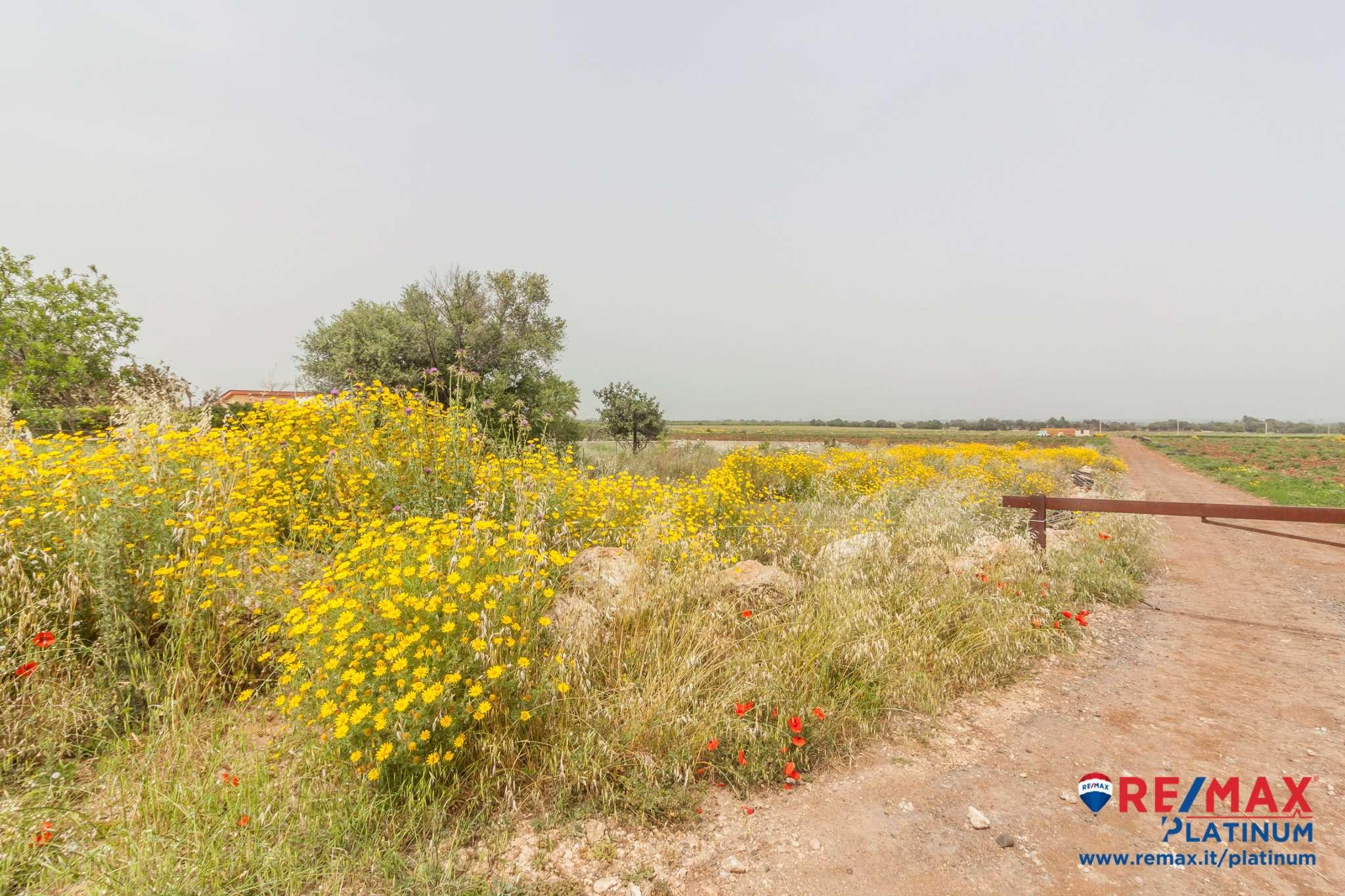 Terreno Agricolo in vendita a Siracusa, 9999 locali, prezzo € 15.000 | PortaleAgenzieImmobiliari.it