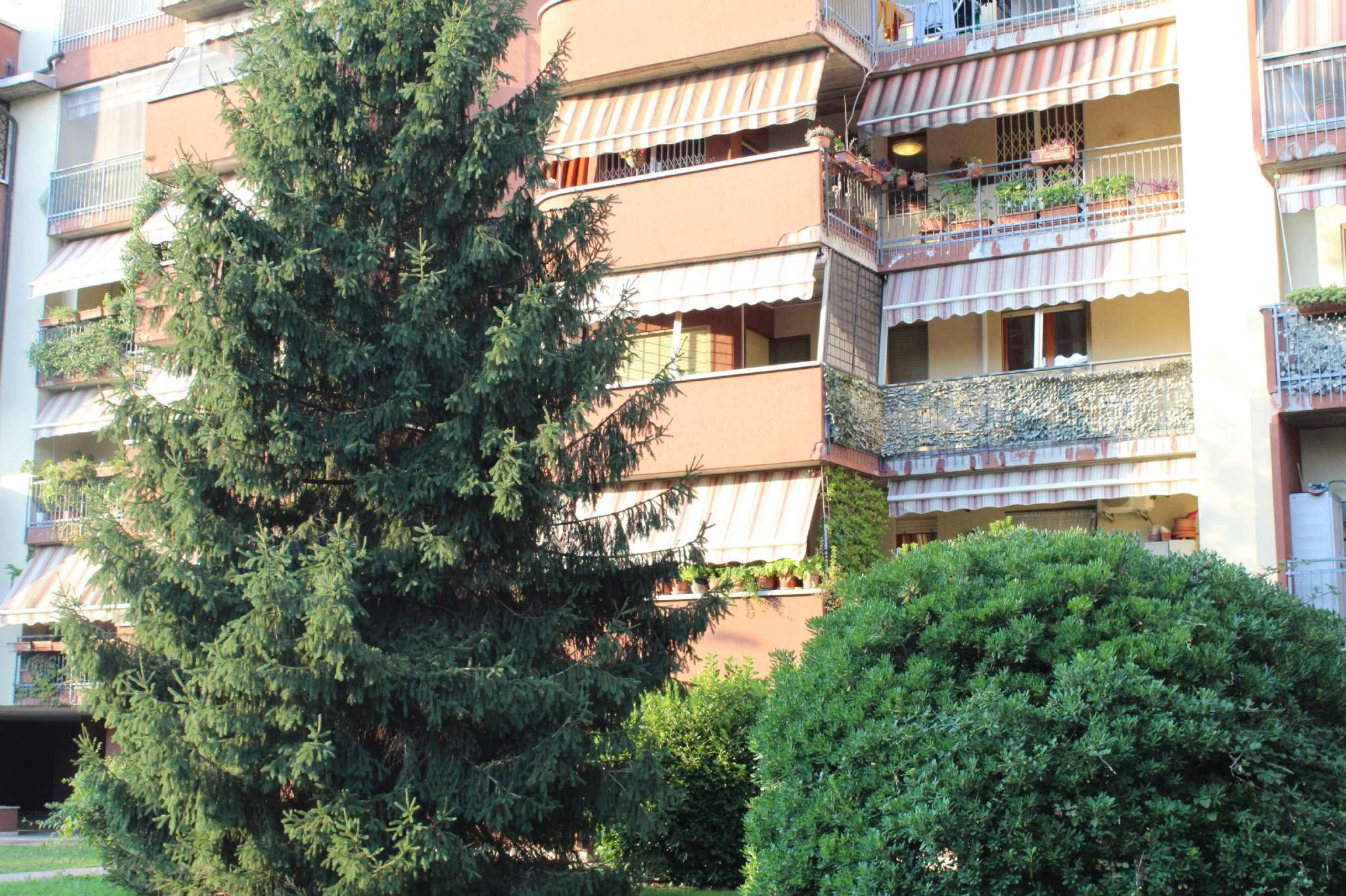 Appartamento in vendita Rif. 7851122