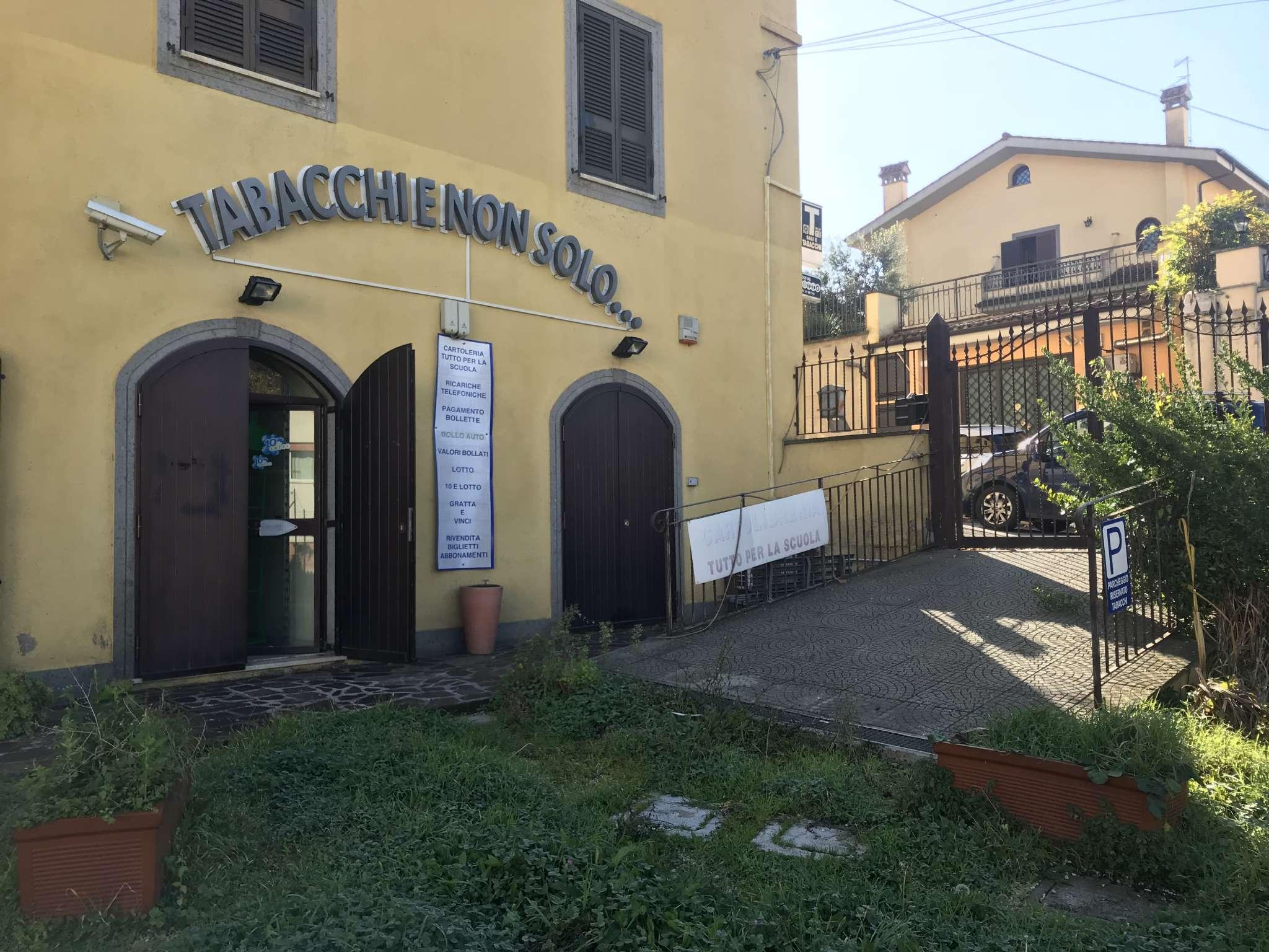 Immobili commerciali in vendita a grottaferrata for Immobili commerciali in affitto a roma