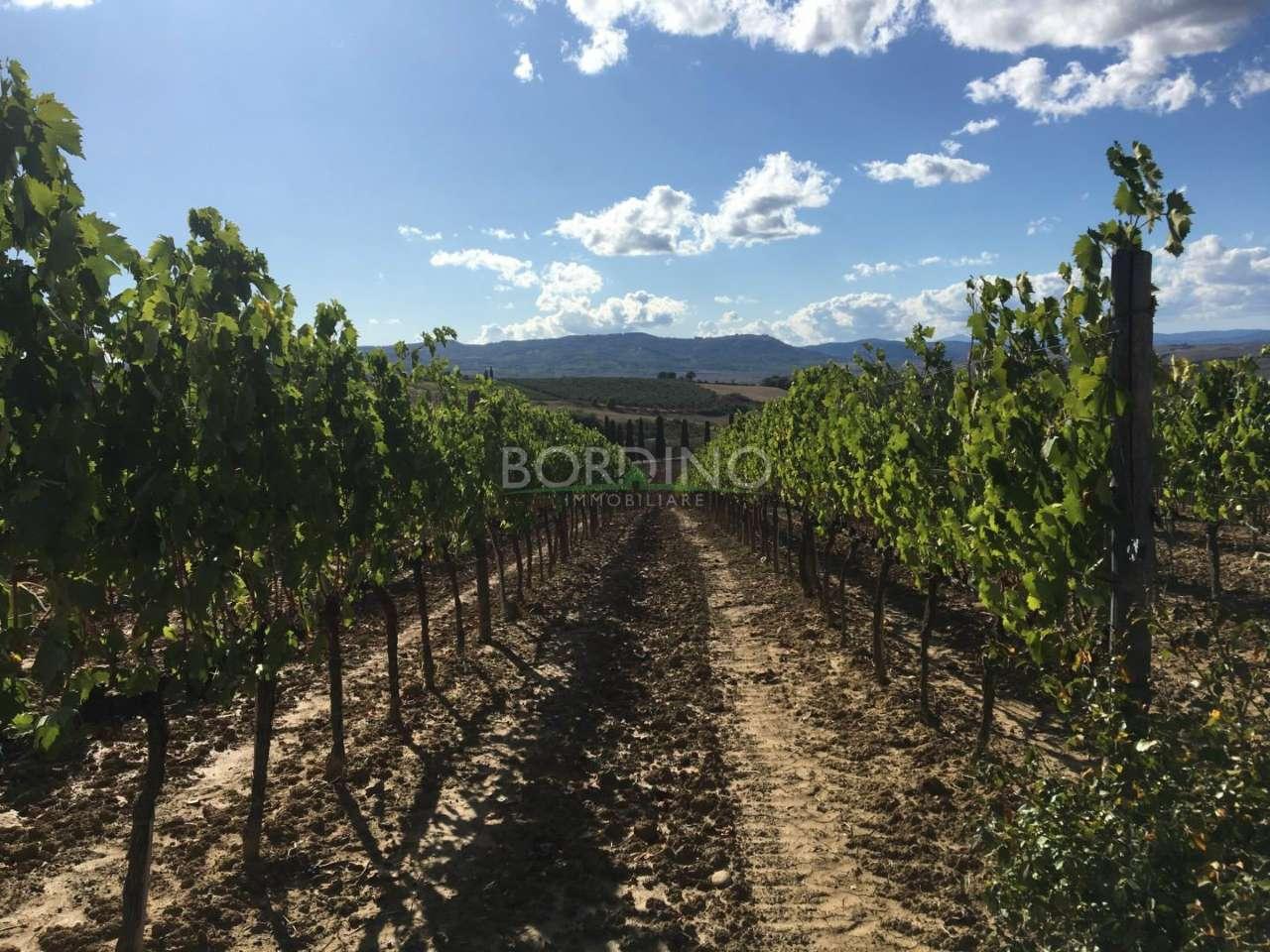 Terreno Agricolo in vendita a San Martino Alfieri, 9999 locali, prezzo € 120.000 | PortaleAgenzieImmobiliari.it